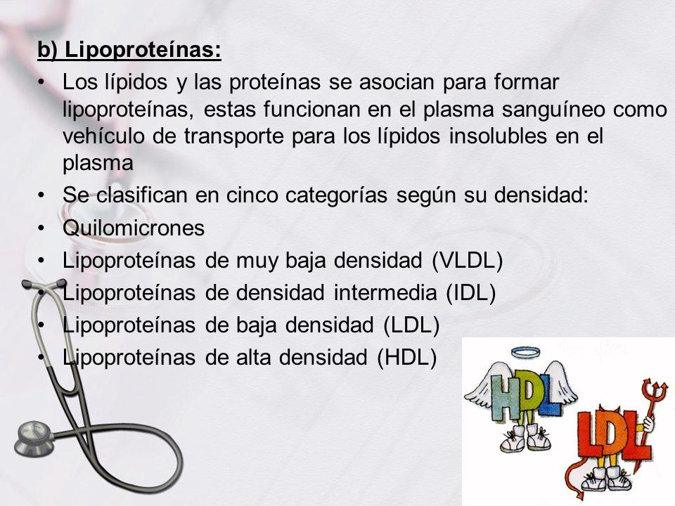 b) Lipoproteínas: Los lípidos y las proteínas se asocian para formar lipoproteínas, estas funcionan en el plasma sanguíneo como vehículo de transporte