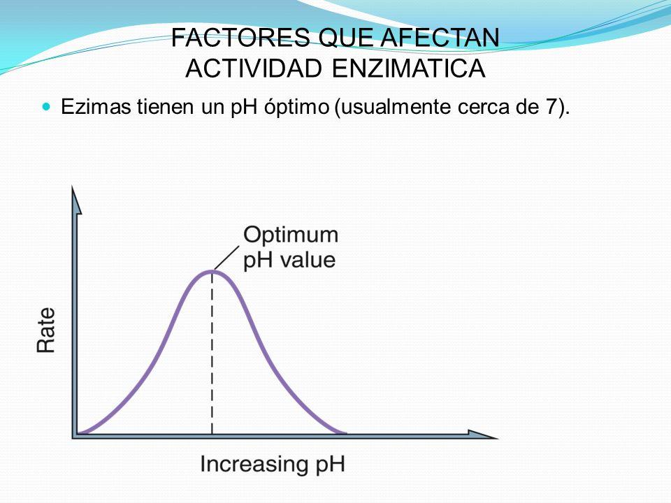 FACTORES QUE AFECTAN ACTIVIDAD ENZIMATICA Ezimas tienen un pH óptimo (usualmente cerca de 7).