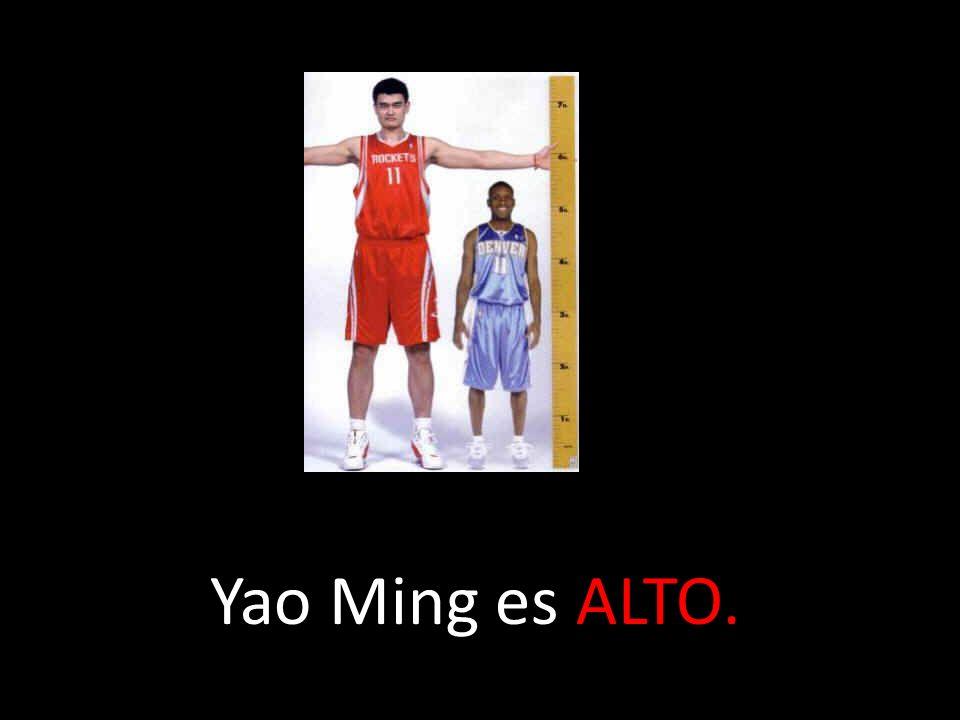 Yao Ming es ALTO.