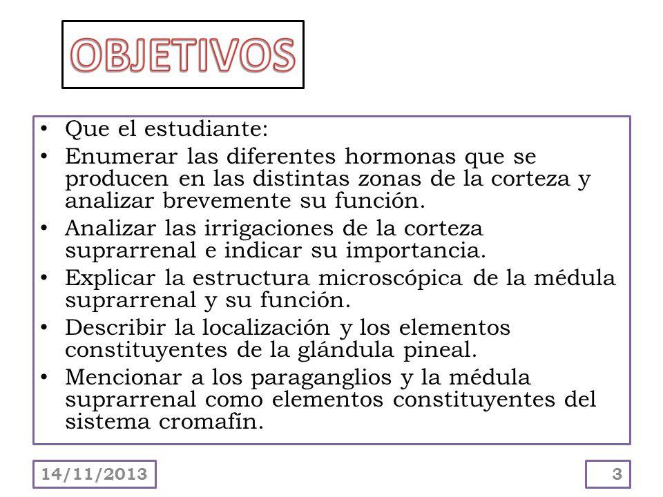 Que el estudiante: Enumerar las diferentes hormonas que se producen en las distintas zonas de la corteza y analizar brevemente su función. Analizar la