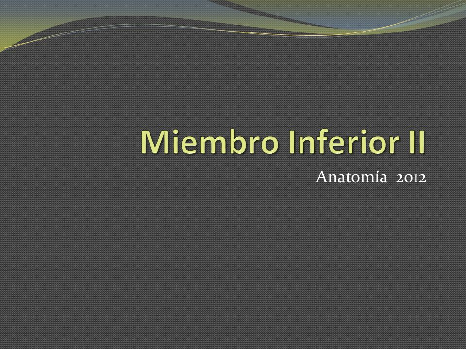 Anatomía 2012
