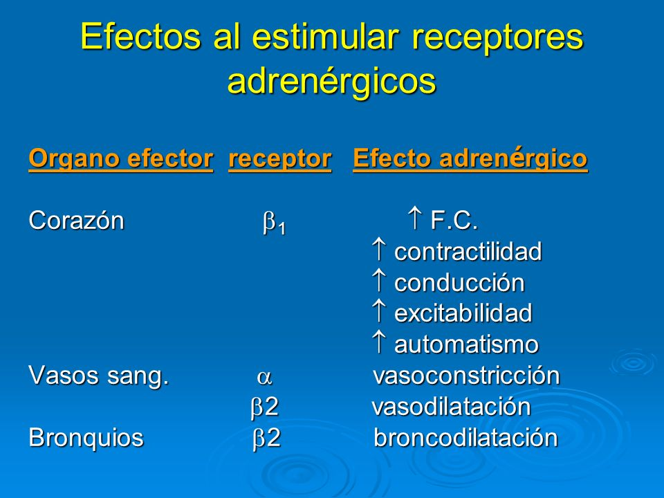 Efectos al estimular receptores adrenérgicos Organo efector receptor Efecto adren é rgico Organo efector receptor Efecto adren é rgico Corazón 1 F.C.