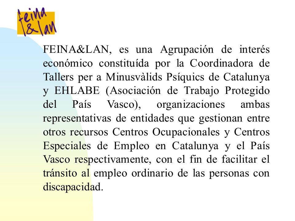 FEINA&LAN, es una Agrupación de interés económico constituída por la Coordinadora de Tallers per a Minusvàlids Psíquics de Catalunya y EHLABE (Asociación de Trabajo Protegido del País Vasco), organizaciones ambas representativas de entidades que gestionan entre otros recursos Centros Ocupacionales y Centros Especiales de Empleo en Catalunya y el País Vasco respectivamente, con el fin de facilitar el tránsito al empleo ordinario de las personas con discapacidad.