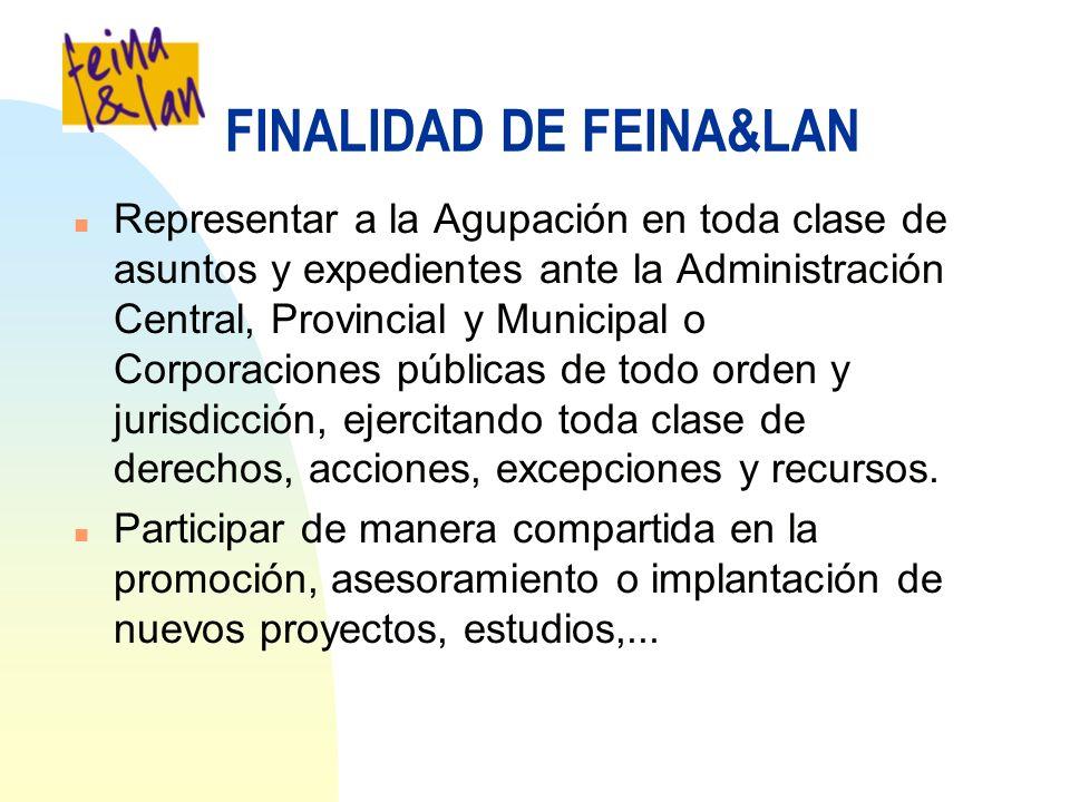 FINALIDAD DE FEINA&LAN n Representar a la Agupación en toda clase de asuntos y expedientes ante la Administración Central, Provincial y Municipal o Co