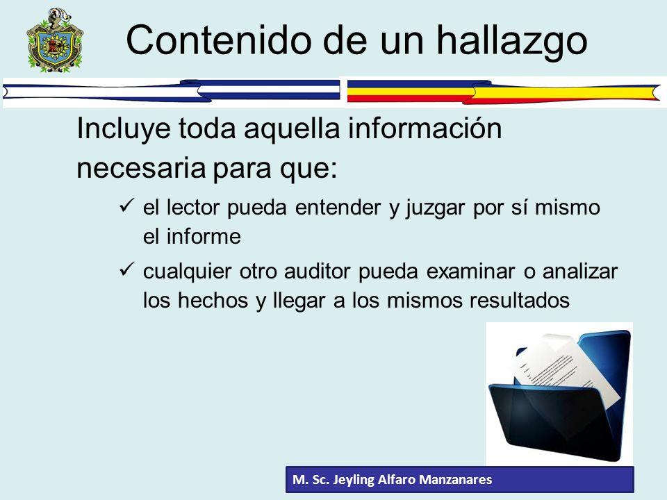 Incluye toda aquella información necesaria para que: el lector pueda entender y juzgar por sí mismo el informe cualquier otro auditor pueda examinar o