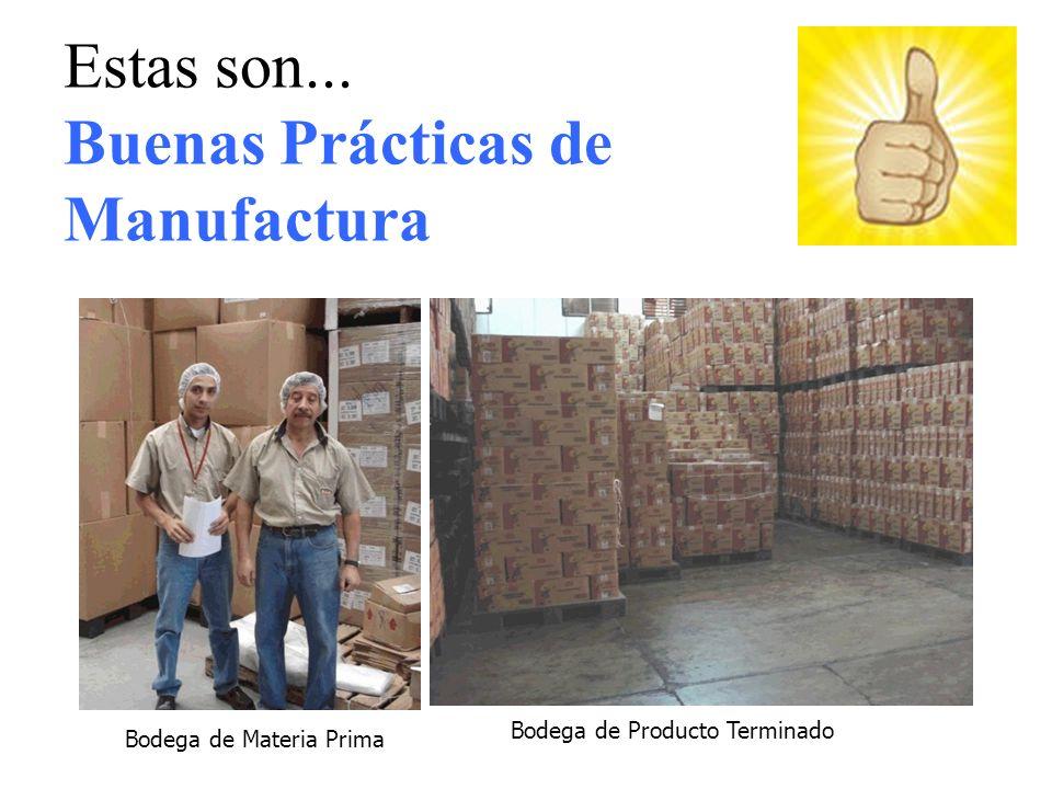 Bodega de Materia Prima Bodega de Producto Terminado Estas son... Buenas Prácticas de Manufactura