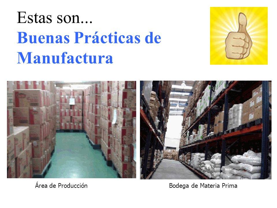 Área de ProducciónBodega de Materia Prima Estas son... Buenas Prácticas de Manufactura