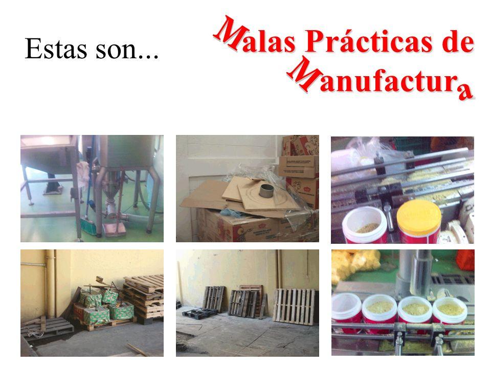 Estas son... alas Prácticas de anufactur_ a