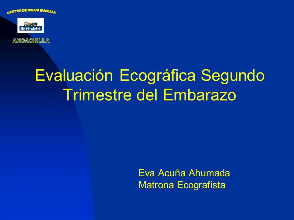 Evaluación Ecográfica Segundo Trimestre del Embarazo Eva Acuña Ahumada Matrona Ecografista