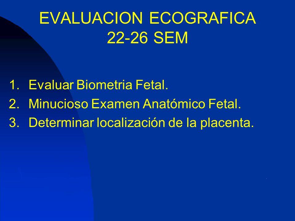 EVALUACION ECOGRAFICA 22-26 SEM 1.Evaluar Biometria Fetal. 2.Minucioso Examen Anatómico Fetal. 3.Determinar localización de la placenta.