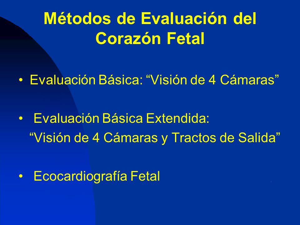 Métodos de Evaluación del Corazón Fetal Evaluación Básica: Visión de 4 Cámaras Evaluación Básica Extendida: Visión de 4 Cámaras y Tractos de Salida Ec