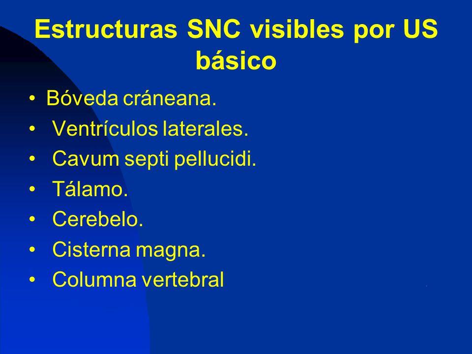 Estructuras SNC visibles por US básico Bóveda cráneana. Ventrículos laterales. Cavum septi pellucidi. Tálamo. Cerebelo. Cisterna magna. Columna verteb