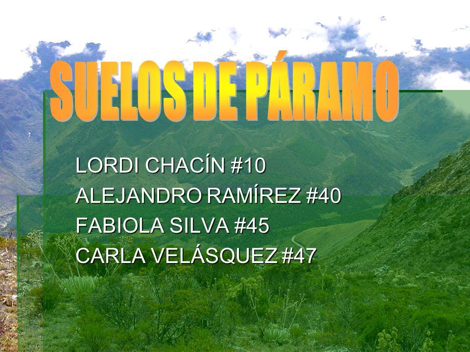 LORDI CHACÍN #10 ALEJANDRO RAMÍREZ #40 FABIOLA SILVA #45 CARLA VELÁSQUEZ #47