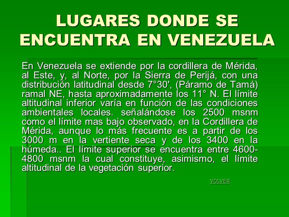 LUGARES DONDE SE ENCUENTRA EN VENEZUELA En Venezuela se extiende por la cordillera de Mérida, al Este, y, al Norte, por la Sierra de Perijá, con una distribución latitudinal desde 7°30 , (Páramo de Tamá) ramal NE, hasta aproximadamente los 11° N.