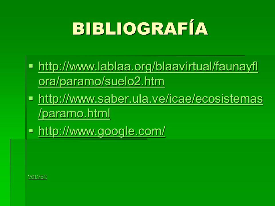 BIBLIOGRAFÍA http://www.lablaa.org/blaavirtual/faunayfl ora/paramo/suelo2.htm http://www.lablaa.org/blaavirtual/faunayfl ora/paramo/suelo2.htm http://www.lablaa.org/blaavirtual/faunayfl ora/paramo/suelo2.htm http://www.lablaa.org/blaavirtual/faunayfl ora/paramo/suelo2.htm http://www.saber.ula.ve/icae/ecosistemas /paramo.html http://www.saber.ula.ve/icae/ecosistemas /paramo.html http://www.saber.ula.ve/icae/ecosistemas /paramo.html http://www.saber.ula.ve/icae/ecosistemas /paramo.html http://www.google.com/ http://www.google.com/ http://www.google.com/ VOLVER