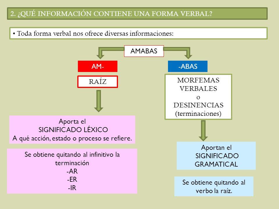 2. ¿QUÉ INFORMACIÓN CONTIENE UNA FORMA VERBAL? Toda forma verbal nos ofrece diversas informaciones: AMABAS AM--ABAS RAÍZ MORFEMAS VERBALES o DESINENCI
