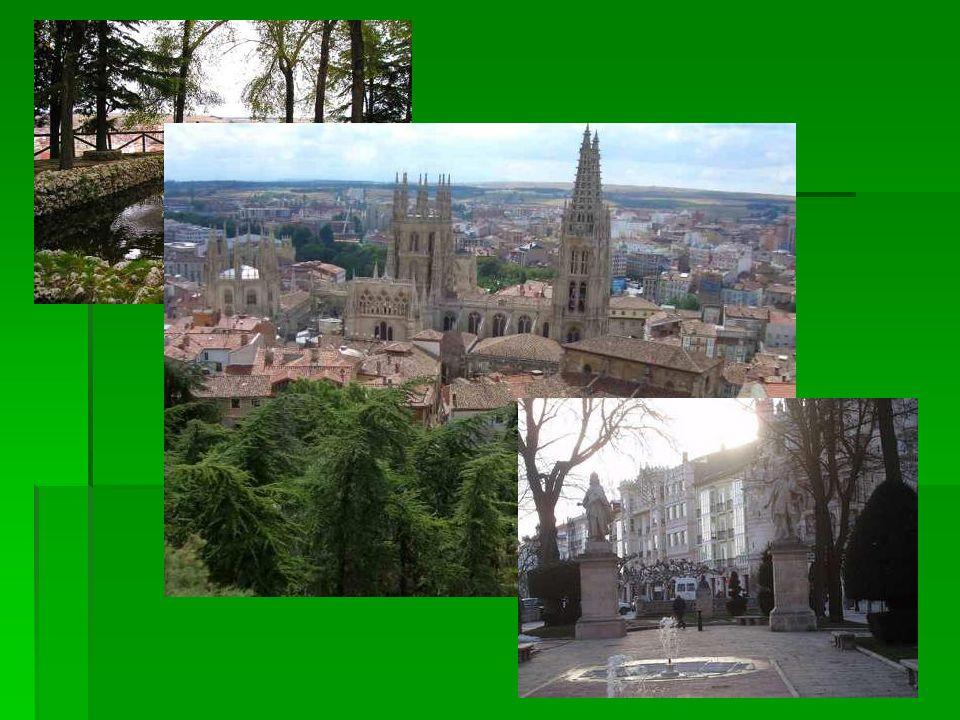 Trabajo (work) Soy profesora de español Soy profesora de español He trabajado en diferentes países He trabajado en diferentes países (Ive worked in different countries)