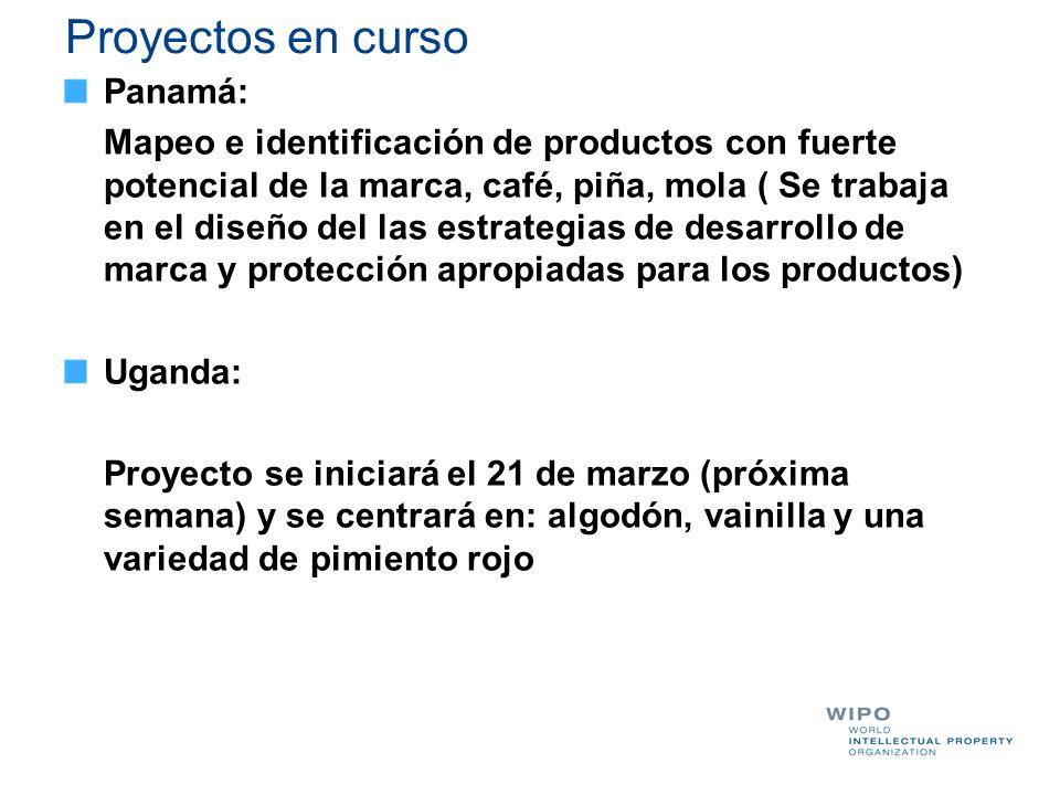Proyectos en curso Panamá: Mapeo e identificación de productos con fuerte potencial de la marca, café, piña, mola ( Se trabaja en el diseño del las es