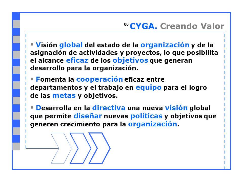 V isión global del estado de la organización y de la asignación de actividades y proyectos, lo que posibilita el alcance eficaz de los objetivos que generan desarrollo para la organización.