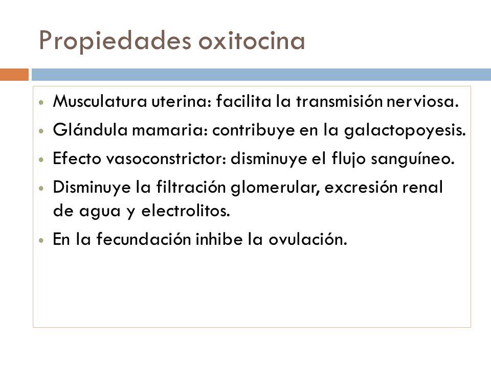 Propiedades oxitocina Musculatura uterina: facilita la transmisión nerviosa. Glándula mamaria: contribuye en la galactopoyesis. Efecto vasoconstrictor