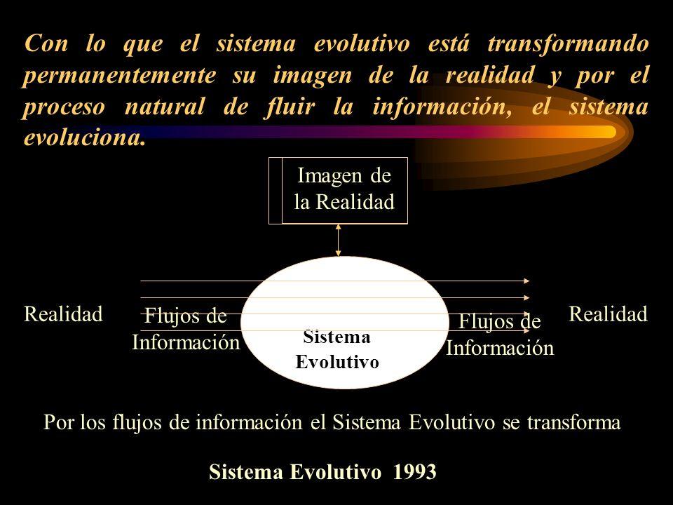 Realidad Por los flujos de información el Sistema Evolutivo se transforma Flujos de Información Sistema Evolutivo Imagen de la Realidad Flujos de Info