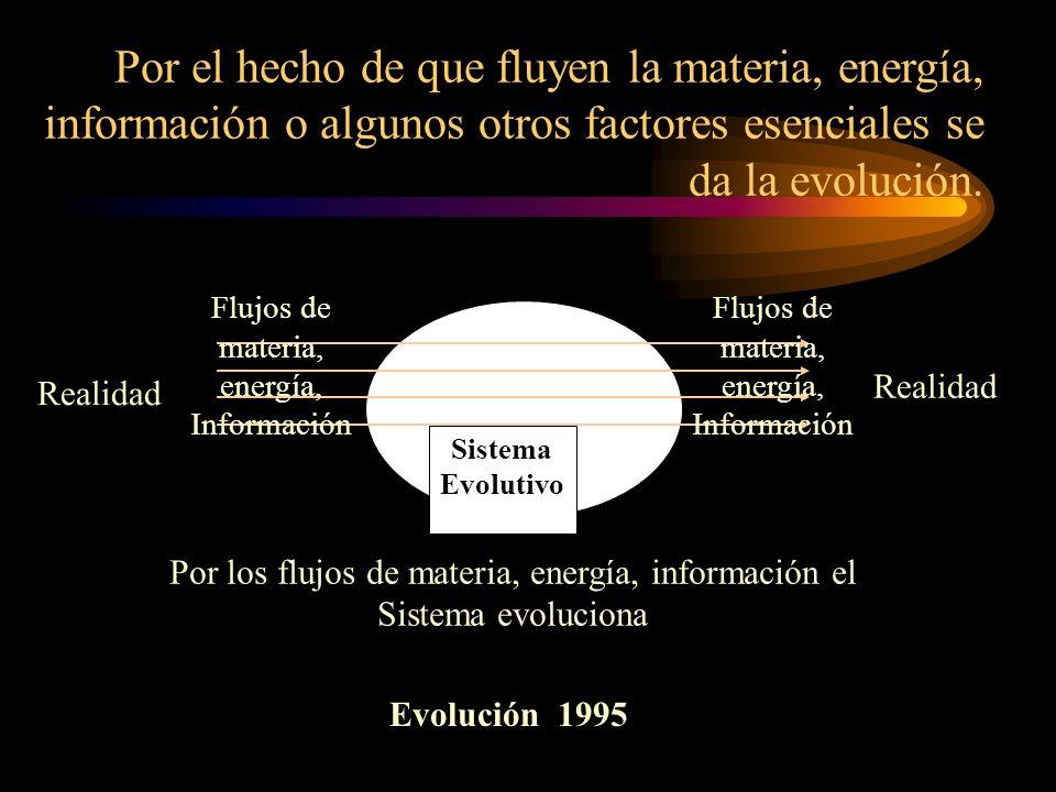 Realidad Por los flujos de materia, energía, información el Sistema evoluciona Sistema Evolutivo Flujos de materia, energía, Información Por el hecho