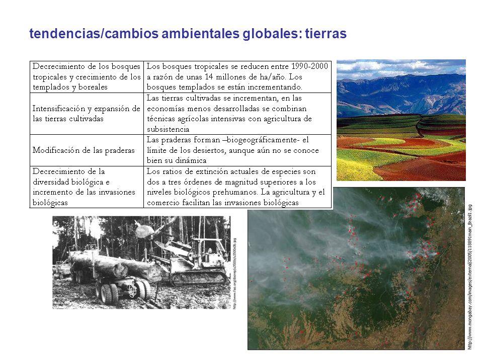 tendencias/cambios ambientales globales: tierras