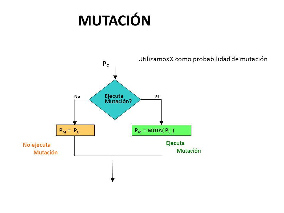 Ejecuta Mutación.