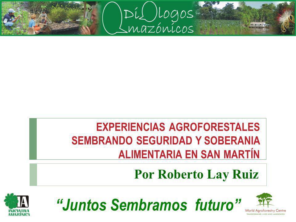 EXPERIENCIAS AGROFORESTALES SEMBRANDO SEGURIDAD Y SOBERANIA ALIMENTARIA EN SAN MARTÍN Por Roberto Lay Ruiz Juntos Sembramos futuro