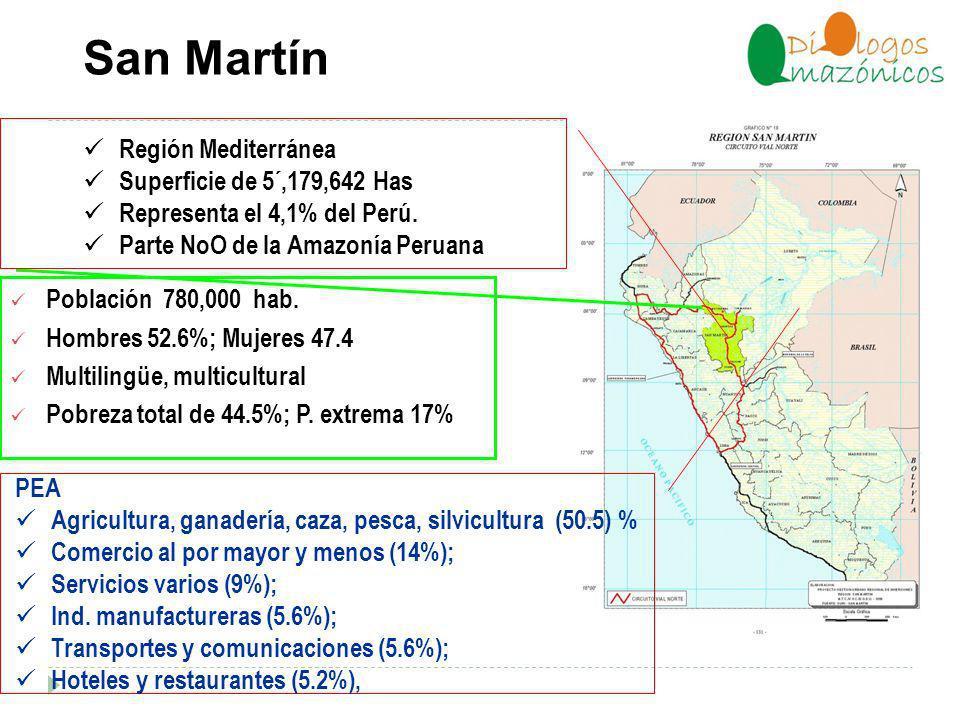 San Martín Población 780,000 hab.