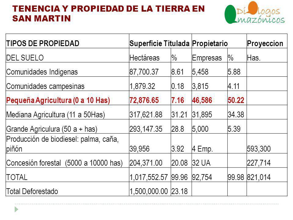 TENENCIA Y PROPIEDAD DE LA TIERRA EN SAN MARTIN TIPOS DE PROPIEDADSuperficie TituladaPropietarioProyeccion DEL SUELOHectáreas%Empresas%Has.