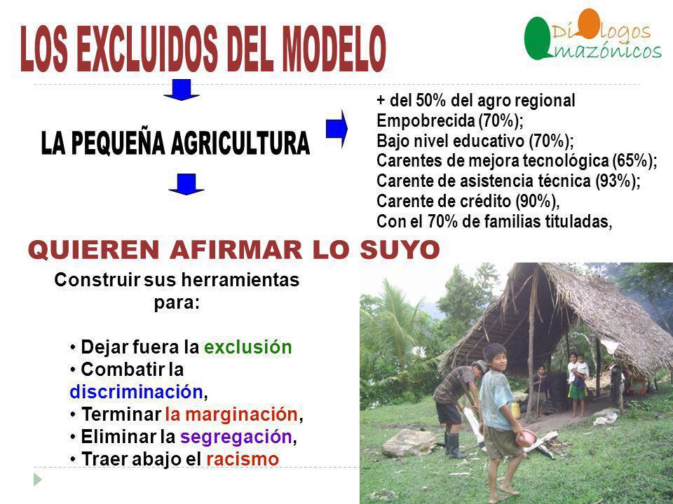 El pobre rural y urbano no pueden ser ayudados por la gran producción, porque ella exige un gran capital, alta tecnología y supone que la persona sea rica.