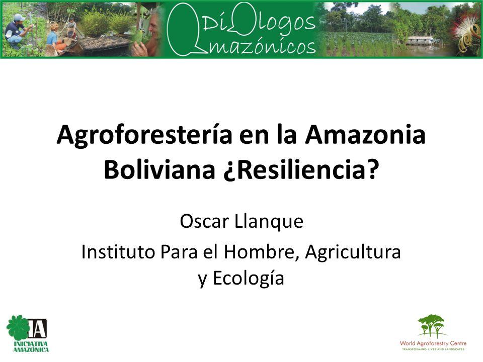 Agroforestería en la Amazonia Boliviana ¿Resiliencia? Oscar Llanque Instituto Para el Hombre, Agricultura y Ecología