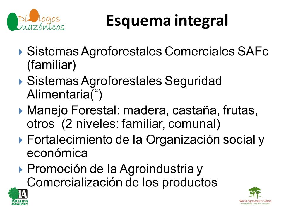 Esquema integral BOLIVIA Sistemas Agroforestales Comerciales SAFc (familiar) Sistemas Agroforestales Seguridad Alimentaria() Manejo Forestal: madera,