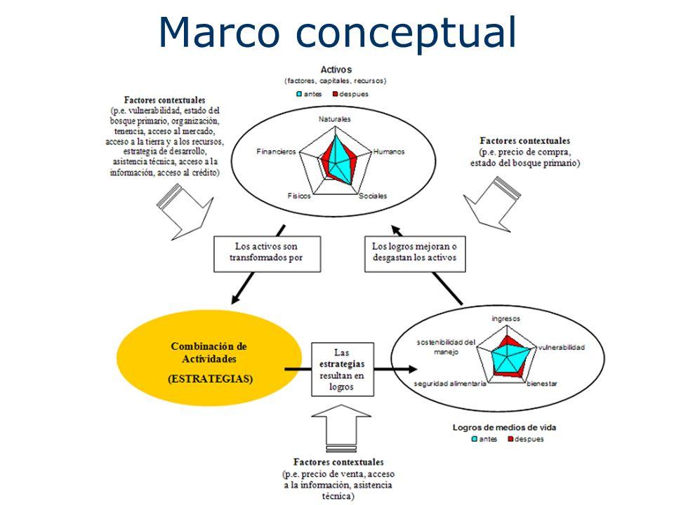 Marco conceptual BOLIVIA