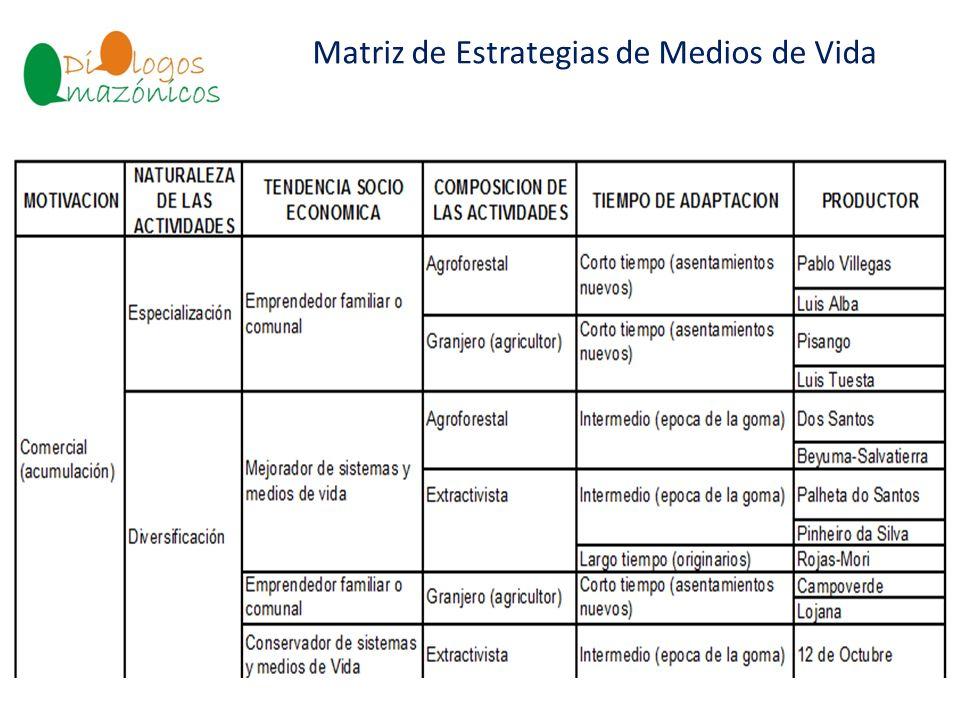Matriz de Estrategias de Medios de Vida BOLIVIA
