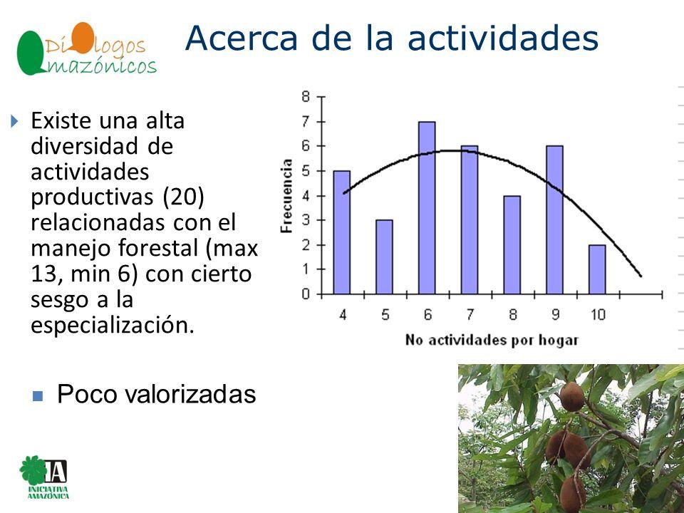 Existe una alta diversidad de actividades productivas (20) relacionadas con el manejo forestal (max 13, min 6) con cierto sesgo a la especialización.
