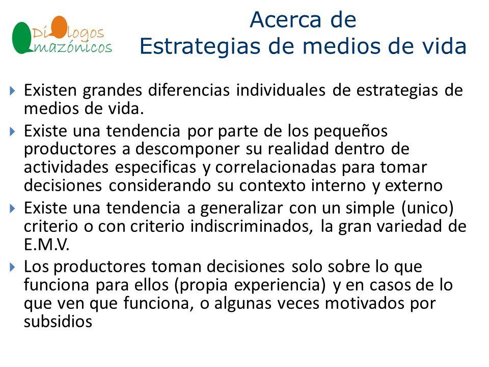 Acerca de Estrategias de medios de vida BOLIVIA Existen grandes diferencias individuales de estrategias de medios de vida. Existe una tendencia por pa