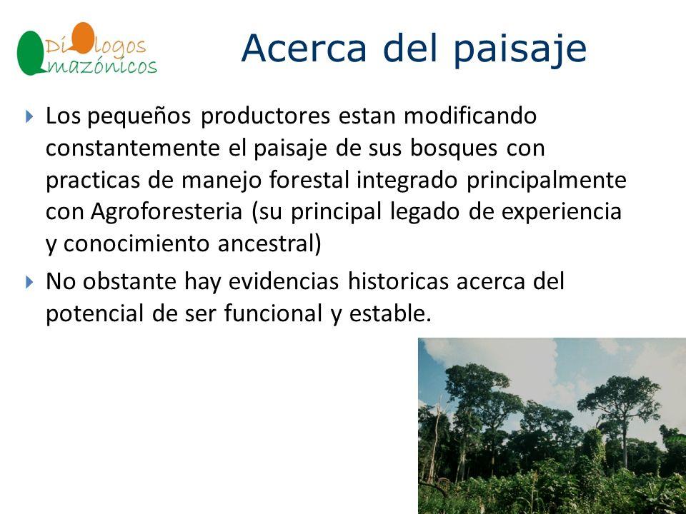 Acerca del paisaje BOLIVIA Los pequeños productores estan modificando constantemente el paisaje de sus bosques con practicas de manejo forestal integr