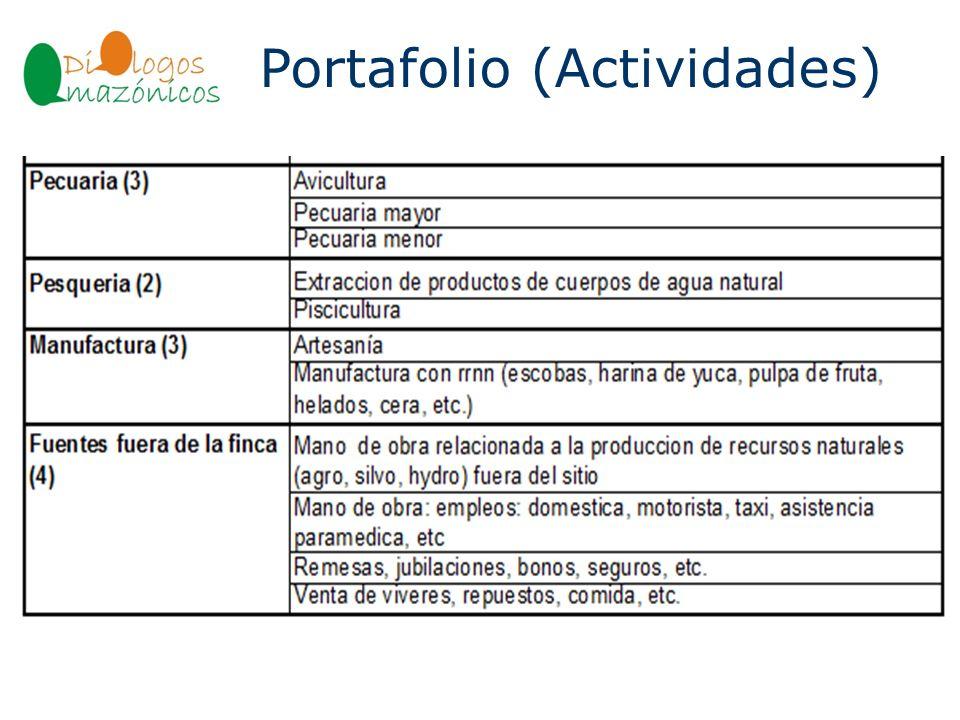 Portafolio (Actividades) BOLIVIA