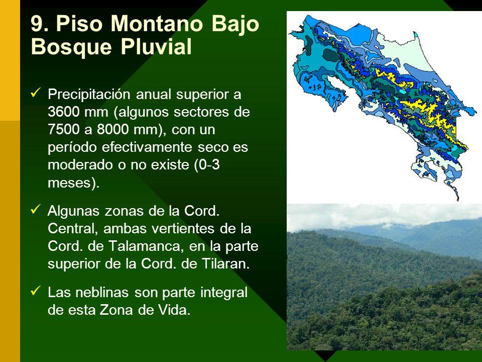 9. Piso Montano Bajo Bosque Pluvial Precipitación anual superior a 3600 mm (algunos sectores de 7500 a 8000 mm), con un período efectivamente seco es