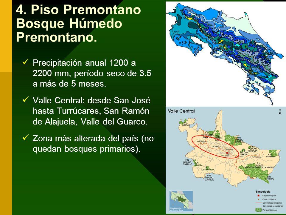 4. Piso Premontano Bosque Húmedo Premontano. Precipitación anual 1200 a 2200 mm, período seco de 3.5 a más de 5 meses. Valle Central: desde San José h