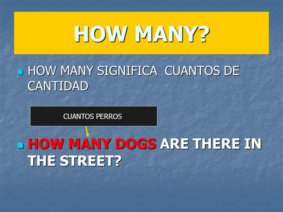 HOW MANY? HOW MANY SIGNIFICA CUANTOS DE CANTIDAD HOW MANY SIGNIFICA CUANTOS DE CANTIDAD HOW MANY DOGS ARE THERE IN THE STREET? HOW MANY DOGS ARE THERE