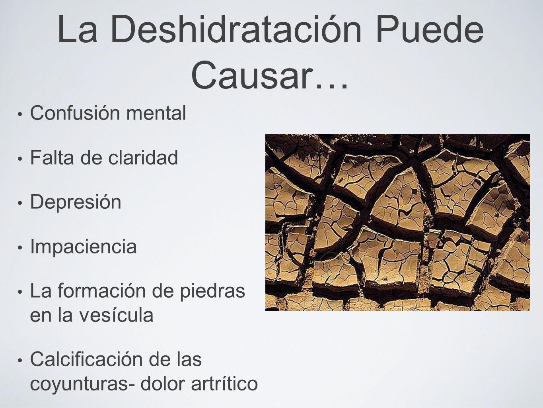 La Deshidratación Puede Causar… Fatiga mental Irritabilidad Los calores de menopausia Un metabolismo mas lento- lo cual produce aumento de peso Aumento de concentración de azúcar en la sangre