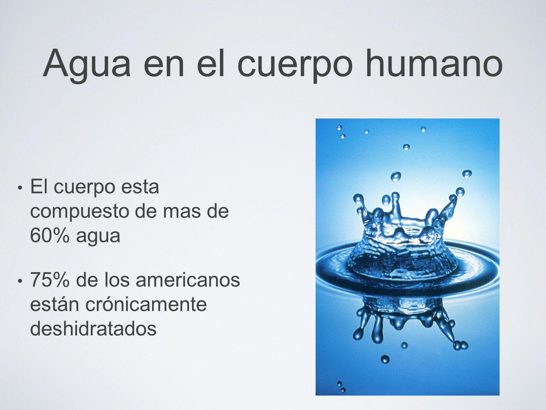 Como se utiliza el agua en el cuerpo.La Sangre: La sangre esta compuesta de 83% agua.