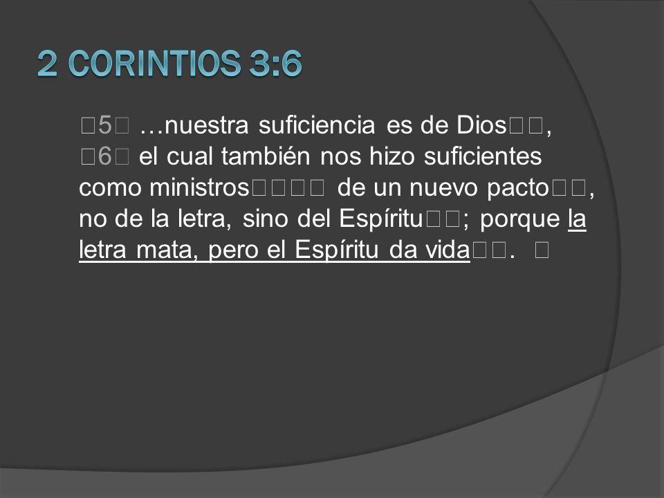 palabra frase oración párrafo sección libro bilico conjunto literarios testamento Biblia Sección