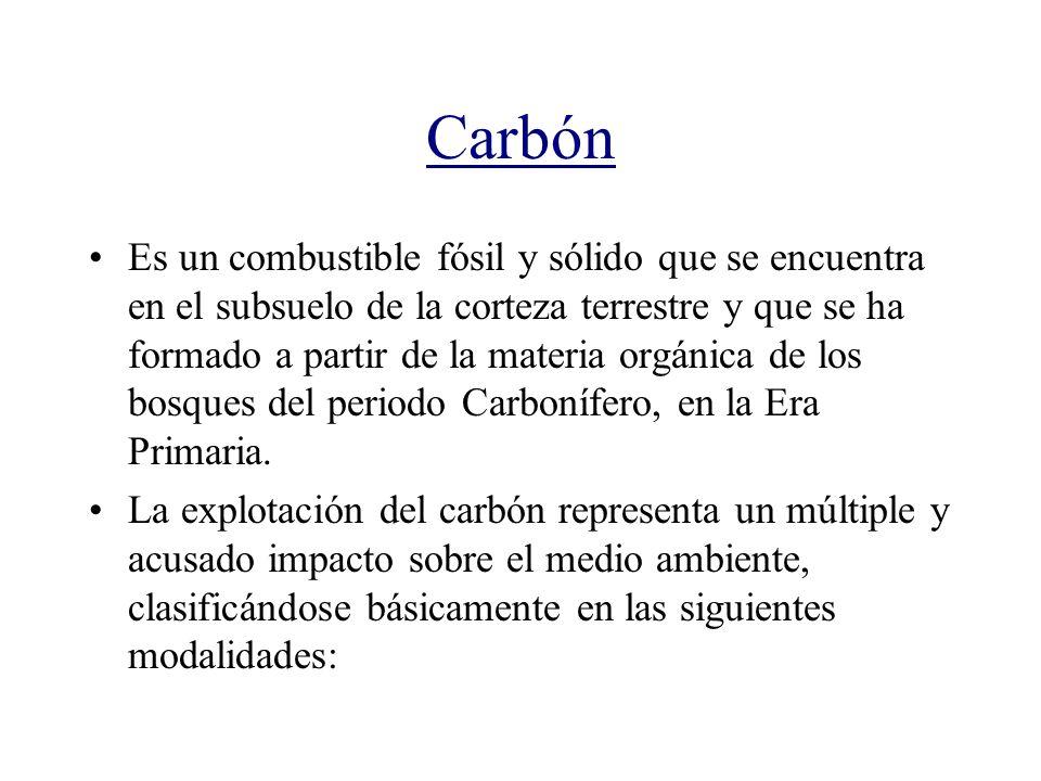 Carbón Es un combustible fósil y sólido que se encuentra en el subsuelo de la corteza terrestre y que se ha formado a partir de la materia orgánica de