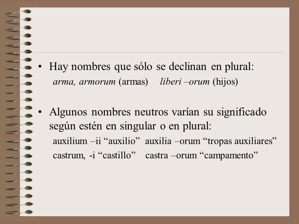 Particularidades de la 2ª declinación Unos pocos sustantivos en -us son de género femenino: 1.nombres de árboles: pinus, -i (pino), malus, -i (manzano