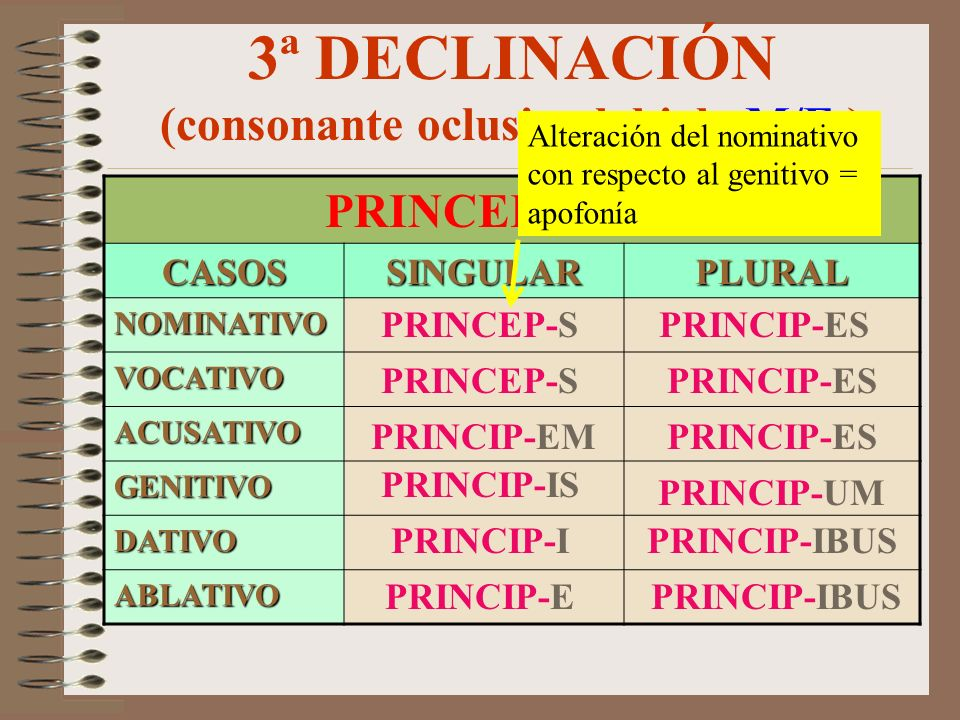 3ª DECLINACIÓN (neutro) DESINENCIAS CASOSSINGULARPLURAL NOMINATIVO VOCATIVO ACUSATIVO GENITIVO DATIVO ABLATIVO ---- -E/-I -A/-IA -I -IS -IBUS -UM/-IUM