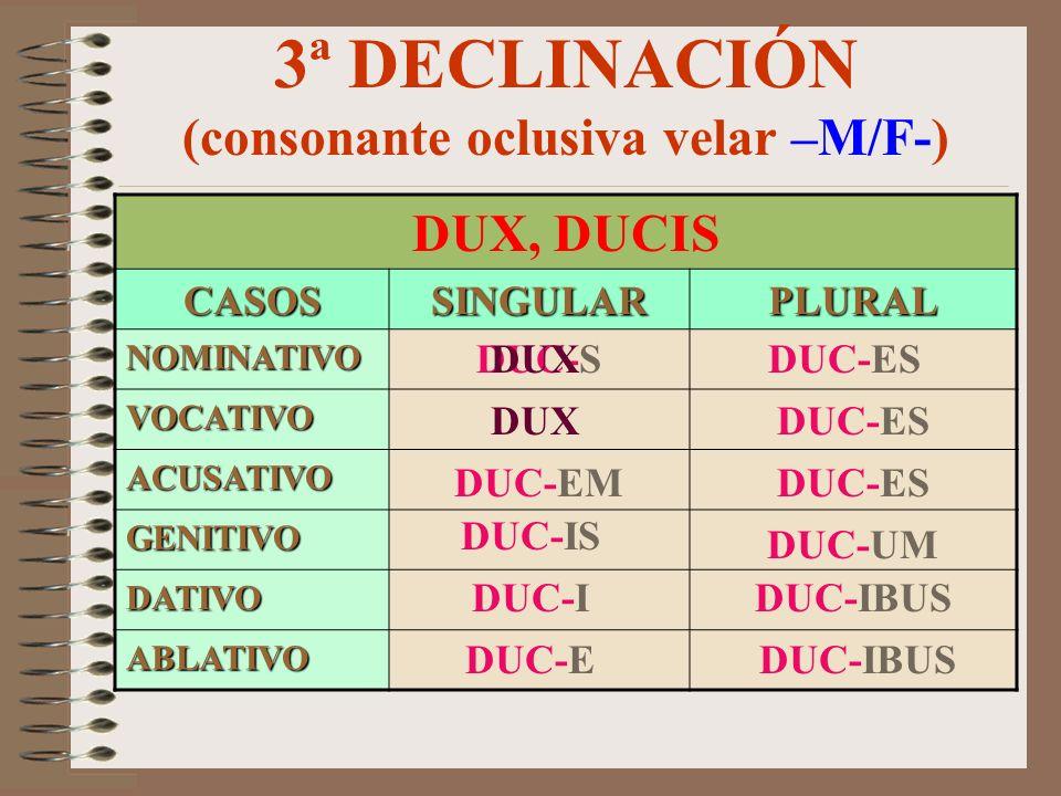 3ª DECLINACIÓN (consonante oclusiva labial –M/F-) PRINCEPS, -IPIS CASOSSINGULARPLURAL NOMINATIVO VOCATIVO ACUSATIVO GENITIVO DATIVO ABLATIVO PRINCIP-E